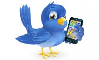 twitter-expert