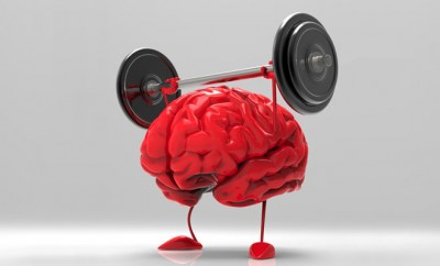 bigstock-Brain-65384389