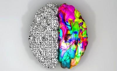 brainsides